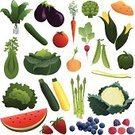 Vegetable,Fruit,Vegetable Garden,Gardening,Spinach,Lettuce,Vector,Asparagus,Ilustration,Carrot,Tomato,Zucchini,Squash - Vegetable,Celery,Corn,Leaf Vegetable,Bean,Artichoke,Plant,Blueberry,Cabbage,Growth,Raspberry,Leaf,Onion,Green Pea,Cucumber,Watermelon,Crop,Raw Potato,Strawberry,Cauliflower,Eggplant,Pepper - Vegetable,Healthy Eating,Radish,Fruits And Vegetables,Stem,Food And Drink
