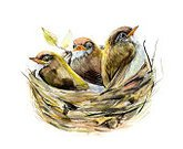 Horizontal,New Life,Sketch,Background,Animal Wildlife,Animal,Painted Image,Young Bird,Summer,Animals In The Wild,Wood - Material,Illustration,Nature,House,Animal Family,Image,Animal Markings,Bird's Nest,Family,Animal Nest,Chicken - Bird,Bird,Hungry,Parent,Watercolor Painting,Three Animals,Drawing - Activity,Forest,Small,Young Animal,Backgrounds,Public Park,Baby Chicken,Birch Tree,Tree,Springtime,Pattern,Green Color