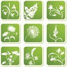 Flower,Single Flower,Dandelion,Symbol,Floral Pattern,Silhouette,Vector,Sign,Icon Set,Lilac,Plant,Iris,Leaf,Lupine,Simplicity,Green Color,Herbal Medicine,Ilustration,Pattern,Decoration,Palm Leaf,Bluebell,Nature,Design,Design Element,Label,Square Shape,Shadow,Clip Art,Ornate,Aster,Growth,Natural Pattern,Season,Beauty In Nature,Sticky,Uncultivated,No People,Color Image,Front View,Isolated On Green