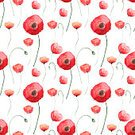 Poppy,Seamless,Pattern,Multi Colored,Backgrounds,Red,Repetition,Petal,Illustration,Nature