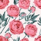 Backgrounds,Pink Color,Flower,Design,Wallpaper Pattern,Painted Image,Seamless,Blossom,Flower Head,Nature,Bud,Retro Styled,Drawing - Activity,Leaf,Vector,Computer Graphic,Cute,Print,Pattern,Petal,Old-fashioned,Illustration,Textile,Springtime,Romance,Peony