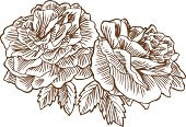 Flower,Rose - Flower,Sketch,Drawing - Art Product,Line Art,Symbol,Computer Graphic,Vector,Flower Head,Ilustration,Leaf,Isolated,Pen And Ink,Pencil Drawing,Stem,Design Element,Vector Florals,Rose Bloom,Illustrations And Vector Art