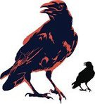 Crow,Raven,Raven,Bird,Silhouette,Evil,Perching,Ilustration,Vector,Isolated,caw,Horror,Intricacy,Ominous,Animal,Outline,Orange Color,Dark,Watching,Textured Effect,One Animal,Halloween,Resting,Birds,Vector Cartoons,graphic element,Isolated On White,Design Element,Animals And Pets,Illustrations And Vector Art,Holidays And Celebrations