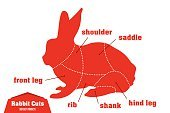 Illustration,Easter,Small,Cute,Cultures,Livestock,Part Of,Animal,Infographic,Food,Nature,Backgrounds,Conspiracy,Restaurant,Pets,Cooking,Meat,Wildlife,Collection,Mammal,Hare,Diagram,Symbol,butchery,Dieting,Vector