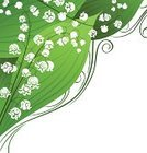 Lily-of-the-valley,Computer Graphic,Lily,Flower,Floral Pattern,Pattern,Backgrounds,Green Color,Springtime,Silhouette,Bud,Plant,Design,Vector,Swirl,Abstract,Leaf,White Background,Branch,Design Element,Curve,Petal,Ilustration,White,Nature,Style,Isolated,Cut Out,Clip Art,Season,Ornate,Decoration,Scroll Shape,botanic,Vector Backgrounds,Vector Florals,Elegance,Flowers,Copy Space,Isolated On White,Flower Head,Stem,template,Illustrations And Vector Art,Nature
