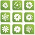 Flower,Single Flower,Symbol,Icon Set,Sign,Floral Pattern,Springtime,Design Element,Ilustration,Decoration,Plant,Label,Shadow,Square Shape,Green Color,Season,Growth,Summer,Clip Art,Leaf,Lush Foliage,Beauty In Nature,Collection,Sticky,Color Image,Vector Florals,Illustrations And Vector Art,Vector Icons