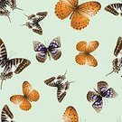 Computer Graphics,Activity,Image,Elegance,Decor,Wallpaper,Nature,Technology,Textured Effect,Newspaper,Document,Paint,Design,Drawing - Art Product,Animal,Animal Markings,Flying,Insect,Colors,Shape,Pattern,Textile,Paper,Fly,Butterfly - Insect,Flower,Springtime,Summer,Decoration,Plan,Backgrounds,Beauty,Computer Graphic,ID Card,Art And Craft,Art,Cute,Ornate,Abstract,Pencil Drawing,Illustration,Cartoon,Beauty In Nature,Group Of Objects,Vector,Merchandise,Single Flower,Fashion,Computer,Retro Styled,Animated Cartoon,Beautiful People,Arts Culture and Entertainment,Background,Grunge,Belongings,Seamless Pattern,Plan