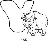 Alphabet,Coloring Book,Alphabetical Order,Yak,Mammal,Zoo,hand drawn,Cute,Fun,Animal,Outline,Contour Drawing,Characters,Cartoon,Coloring