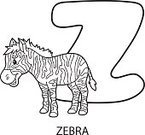 Alphabet,Coloring Book,hand drawn,Alphabetical Order,Zoo,Mammal,Zebra,Cute,Characters,Young Animal,Animal,Fun,Outline,Cartoon,Contour Drawing,Coloring