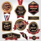 Business,Collection,Decoration,Diamond,Branding,Badge,template,Shape,Red,Award,Beautiful,Shiny,Quality Control,Set,Success,Vector,Development,premium,Gold,Security,Label,Luxury,Insignia