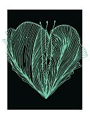 Heart Shape,Backgrounds,Illustration,Vector,Greeting Card,Paintings,Ink,Black Color