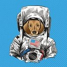Travel,Space,Art,Vector,Illustration,Purebred Dog,Insignia,Astronaut,Alien,Sketch,Suit,Dog,Pencil Drawing,Planet - Space,Art Product,Pets,Comic Book,Dachshund,Banner,Placard,Cartoon,Animal,USA,Symbol,Drawing - Art Product