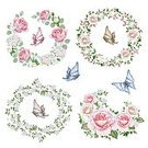 Floral Pattern,Decoration,Watercolor Painting,Isolated,Flower,Drawing - Art Product,Bouquet,Ornate,Painted Image,Wreath,Lush Foliage,White Background,Bud,English Rose,Branch,Twig,Pattern,Petal,Rose - Flower,Pink Color,Single Flower,Butterfly - Insect