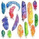 Painted Image,hand drawn,Paintings,Watercolor Painting,Collection,Multi Colored,Feather,Isolated,Set,Vibrant Color,Drawing - Art Product