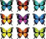 Multi Colored,Yellow,Pink Color,Blue,Summer,Abstract,Celebration,Animal,Collection,Illustration,Vector,Insect,Sign,Pattern,Nature,Backgrounds,Group of Objects,Decoration