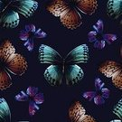 Computer Graphic,Seamless,Drawing - Art Product,Image,Beauty In Nature,Butterfly - Insect,Colors,Summer,Vector,Insect,Pattern,Textured Effect,Wallpaper Pattern,Activity,Grunge,Single Flower,Animal,Newspaper,Photographic Effects,Elegance,Abstract,Flying,Decor,Set,Illustration,Document,Plan,Design,Decoration,Pencil Drawing,Fashion,Textile,Backgrounds,Springtime,Art,Computer,Ornate,Textured,Nature,Cartoon,Belongings,Flower,Human Hand,Paper,Cute,Stage Set,Shape,Fly,Paint,Merchandise,Wallpaper