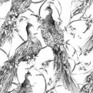 Illustration,Seamless,Watercolor Painting,Pattern,Bird,Feather,Backgrounds