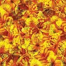 Summer,Ornate,Animal Wing,Image,Animal Themes,Animal,Plan,Decoration,Wallpaper,Wallpaper Pattern,Computer,Art,Human Hand,Document,Back Lit,Banner,White,Four Seasons,Flying,Computer Graphic,Fashion,Textured Effect,Design,Placard,Seamless,Colors,Springtime,Elegance,Pattern,Illustration,Vector,Nature,Backgrounds,Butterfly - Insect,Beauty In Nature,Insect,Abstract,Paper,Silhouette,Grunge,Color Image,Season,Textile,Style,Textured,Painted Image