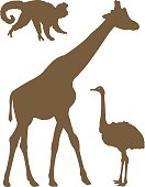 Illustration,Set,Ostrich,Zoo,Wildlife,Safari Animals,Giraffe,Silhouette,Animals In The Wild,Bird,Mammal,Animal,Sign,Computer Icon,Backgrounds,Symbol,Monkey