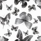 Abstract,Elegance,Grunge,Silhouette,Back Lit,Computer Graphics,Art And Craft,Background,Banner,Animal Wing,Art,Animal,Painted Image,Wallpaper,Placard,Ornate,Paper,Animal Themes,Document,Summer,Illustration,Nature,Four Seasons,Image,Animal Markings,Fashion,Banner - Sign,Human Body Part,Flying,Technology,Computer Graphic,Seamless Pattern,Plan,Butterfly - Insect,Decoration,Season,Insect,Human Hand,Backgrounds,Plan,Animal Body Part,Arts Culture and Entertainment,Beauty In Nature,Textured Effect,Vector,Springtime,Computer,Design,Textured,Pattern,White Color,Colors,Textile