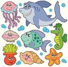 Cartoon,Starfish,Fish,Sea,Shark,Animal,Sea Horse,Underwater,Life,Cute,Vector,Jellyfish,Happiness,Coral,Water,Animal Shell,Medusa,Art,Smiling,Set,Drawing - Art Product,Ilustration,Star Shape,Collection,Anemone Flower,Isolated,Animal Themes,Tropical Climate,Design,Smiley Face,Nature,Animal Fin,Multi Colored,Color Image,Saltwater Fish,Swimming Animal,Animals And Pets,Animal Scale,Art Product,Objects with Clipping Paths,Illustrations And Vector Art,Isolated Objects,Sea Life,Wildlife