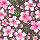 Cherry,Cherry Blossom,Watercolor Painting,Watercolor Paints,Art,Sakura,Single Flower,Pattern,Blossom,Flower,Painted Image,Seamless