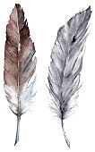 Animal,Gray,Wildlife,Collection,Design Element,Art,Watercolor Paints,Isolated,Arranging,Bird,Feather,Watercolor Painting,Remote,Cutting,Pattern,Multi Colored,Creativity,Drawing - Activity,Art Product,Color Image,Beauty,Environment,Botany,Abstract,Decoration,Painted Image,Paint,Symbol,Silver Colored,Animals In The Wild,Single Object,Drop,Blue,Indigo,Two Objects,Composition,Pair,Brown,Navy Blue,Part Of,Set,Illustration,Colors,Design,Drawing - Art Product,Sketch,Beautiful,Beauty In Nature,Nature,Candid,Ornate,Computer Graphic,Metal Clip
