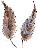 Animal,Gray,Animals In The Wild,Single Object,Part Of,Drop,Art,Watercolor Paints,Feather,Bird,Feather,Vector,Watercolor Painting,Cutting,Environment,Pattern,Multi Colored,Creativity,Drawing - Activity,Art Product,Sketch Restaurant,Color Image,Beauty,Indian Culture,Botany,Retro Styled,Abstract,Decoration,Painted Image,Paint,Symbol,Silver Colored,Rebellion,Wildlife,Design Element,Collection,Blue,Indigo,Two Objects,Number 2,Pair,Brown,Navy Blue,Remote,Isolated,Illustration,Colors,Design,Drawing - Art Product,Sketch,Human Hand,Beautiful,Beauty In Nature,Indian Ethnicity,Candid,Ornate,Old-fashioned,Computer Graphic,Nature