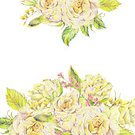 Painted Image,Paintings,Illustration,Watercolor Painting,Rose - Flower,Flower