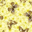 No People,Summer,Illustration,Nature,Animal Markings,Seamless Pattern,Butterfly - Insect,Insect,Vector,Pattern,Colors