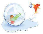 Puddle,Leaving,Aquarium,Drinking Water,Moving House,Goldfish,Fish,Cartoon,Spilling,Fishbowl,Vector,Humor,Go - Single Word,Image,Homelessness,Animal,Concepts,Bundle,Disaster,Red,Ilustration,Runaway,Travel,Vector Cartoons,Illustrations And Vector Art,Loneliness,Blue