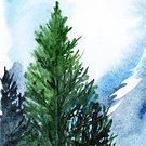 Landscape,Nature,Illustration,Forest,Snow,Art,Pine,Watercolor Painting,Painted Image,Tree