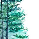 Square,No People,Landscape,Pine Wood,Pine,Illustration,Nature,Pinaceae,Watercolor Painting,Forest,Landscape,Paint,Pine Tree,Tree