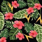 Nature,Red,Pattern,Flower,Leaf,Summer,Palm Tree,Backgrounds,Hibiscus,Illustration,Floral Pattern,No People