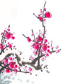 Cherry Blossom,Blossom,Illustration,Isolated,Watercolor Painting,Branch,Paintings,Watercolor Paints,Cherry,Tree,Painted Image,Flower