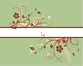 Backgrounds,Flower,Green Color,Design,Frame,Pattern,Banner,Retro Revival,Scroll Shape,Swirl,Art,Vector,Cute,Cool,Single Line,Springtime,Grunge,Abstract,Stem,filigree,flourishes,Nature,Curve,Panel,Color Image,Shape,Petal,Candid,Silhouette,Vitality,Inspiration,Style,Blossom,Arts And Entertainment,Holidays And Celebrations,Illustrations And Vector Art,Bush,Message,Blank