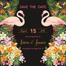No People,Flower,Flamingo,Tropical Climate,Save The Date,Wedding,Illustration,Bird,Tropical Flower,Floral Pattern