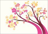 Blossom,Tree,Vector,Branch,Flower,Springtime,Pink Color,Ilustration,Yellow,Curve,Inflorescence,Vector Ornaments,Vector Florals,Illustrations And Vector Art,Nature,Spring