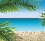 Holiday,Illustration,Isolated,Leaf,Hawaii Islands,Green Color,Color Image,Tropical Climate,Flat,Floral Pattern,Sea,Palm Tree,Sunset,Tree,Vector,Wave Pattern,Sunny,Summer,Pattern,Relaxation,Shiny,Coconut Palm Tree,Coastline,Big Island,Heat - Temperature,Island,Landscape,Beach,Beautiful,Caribbean Sea,Caribbean,Tranquil Scene,Blue,Outdoors,Idyllic,Travel,Vacations,Wood - Material,Cartoon,Sunrise - Dawn,Sun,Plant,Seascape,Sky,Nature