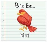 Bird,Animal,Alphabet,Handwriting,Cardboard,Wildlife,Cute,Clip Art,Image,Student,Single Object,Pets,Flash Card,Educaitonal,Teacher,Mammal,Computer Graphic,Backgrounds,Vector,Education,Elementary Age,Spelling,Reading,phonetics,Preschool Building,Learning