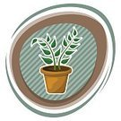 Illustration,Nature,Botany,Flower Pot,Vector,Indoors,Brown,Computer Graphic,Decor,Backgrounds,Ornate,Leaf,Lush Foliage,petiole,Image,Plant,Photograph,Dirt,Potted Plant,Stem,Clip Art,Decoration,Window
