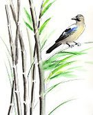 Vertical,No People,Sketch,Bamboo - Plant,Illustration,Nature,Ink,Bird,Watercolor Painting,Branch