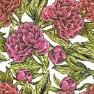 Summer,Cute,Shape,Abstract,Computer Graphic,Peony,Pattern,Backgrounds,Vector,Ornate,Backdrop,Romance,Nature,Illustration,Leaf,Decor,Decoration,Boho