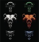 Wolf,Bear,Leopard,Black Leopard,Brown Bear,Anger,Furious,Displeased,Snarling,Roaring,Aggression,Vector,Animal Mouth,Animal,Animal Head,Cruel,Animal Teeth,Front View,Danger,Wildlife,Power,Black Background,Mammal,Animals And Pets,Illustrations And Vector Art,Isolated Objects,Wild Animals