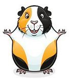 Cut Out,Animal,Cute,Cartoon,Cheerful,Tricolor,Mammal,Guinea Pig,Illustration,Pets,Rodent,Vector,Domestic Animals