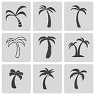 Nature,Vacations,Summer,Silhouette,Tourist Resort,Leaf,Landscape,Illustration,Coconut,Vector,Tree,Computer Icon,Island,Beach,Tropical Climate,Palm