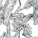 Pattern,Vector,Tropical Rainforest,Seamless,Cockatoo,Tree,Parrot,Painted Image,Black Color,Black And White,Zoo,Leaf,Repetition,Animals In The Wild,Bird,Sketch,White,hand drawn,Tropical Bird,Animal,Abstract,Decoration,Illustration,Nature,Backgrounds