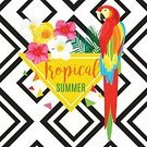 Tropical Rainforest,Summer,T-Shirt,typographical,Typescript,Pineapple,Parrot,Striped,Seamless,Palm Leaf,Backgrounds,Fruit,Bird,Invitation,Backdrop,Computer Graphic,Heat - Temperature,Pattern,Animal,Geometric Shape,Plan,Vacations,Vector,Beach,Triangle Shape,template,Greeting Card