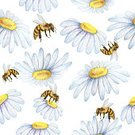 Pattern,Illustration,Backgrounds,Seamless,Chamomile,Insect,Bee,Flower,Watercolor Painting