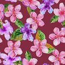 Cherry,Drawing - Art Product,Backgrounds,Paint,Blossom,Illustration,Pink Color,Watercolor Painting